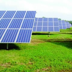 Zhejiang ERA Solar Technology - Solar Modules